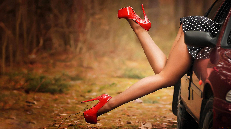 картинки машин с женскими ногами живописных